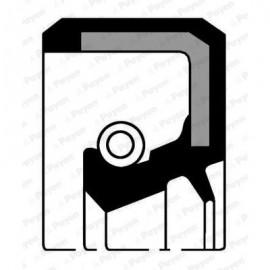 ΤΣΙΜΟΥΧΑ ΣΤΡΟΦΑΛΟΥ (32x47x6) PAYEN NJ377